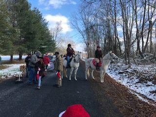 Parade 2017 horses